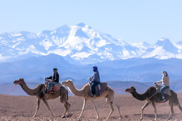 people riding camel in the mountains