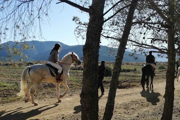 horse treks in morocco
