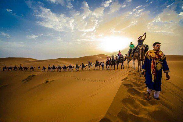 camel caravan on sahara