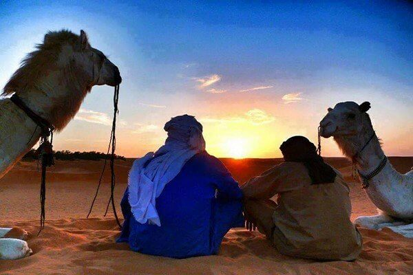 two people and two camels looking at the sunset