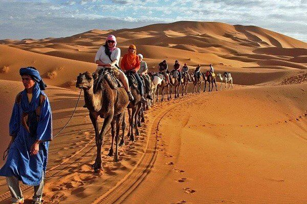 poeple riding camels in sahara desert in morocco