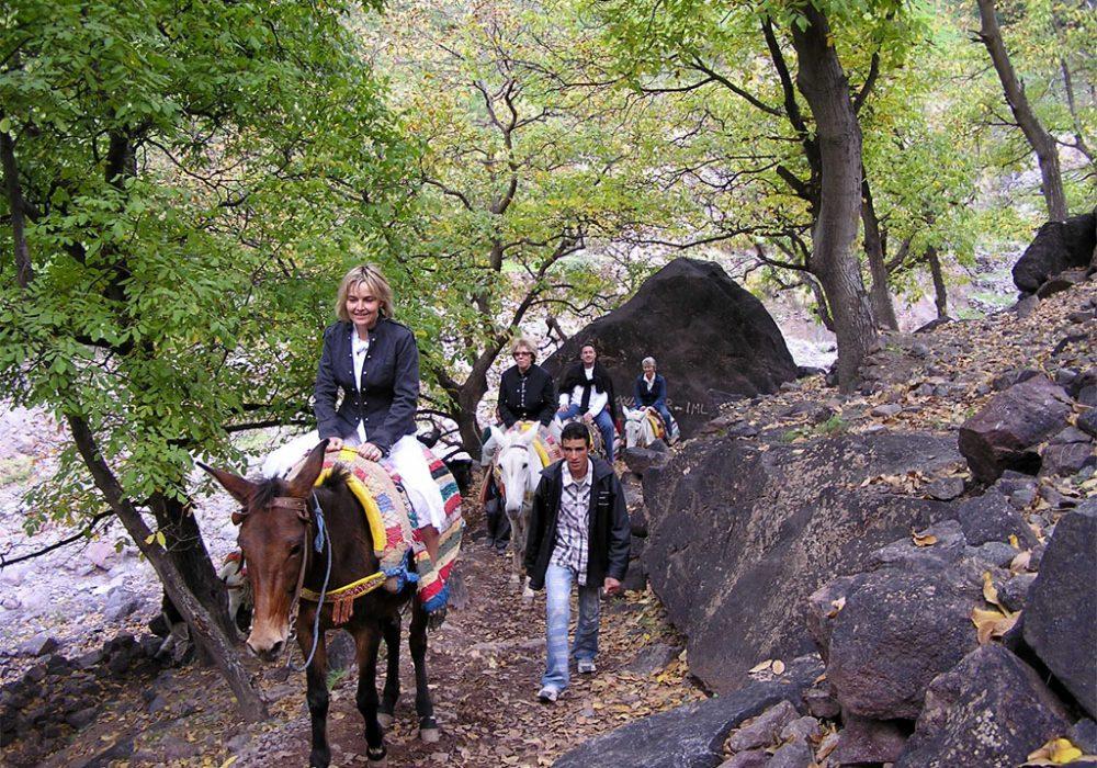mule ride in atlas mountains